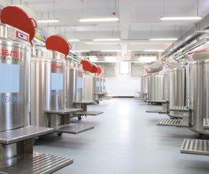 Epoxy gietvloer in de fabriek